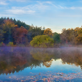 Fall at the Lake by Nancy Lacy - Landscapes Waterscapes ( illinois, fall, mortonarboretum, lake marmo, anne lacy, mist, color, colorful, nature )