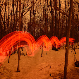 Red dragon by Jay Anderson - Abstract Light Painting ( red, monster, dragon, night, painting, light, smoke,  )