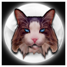 Fortune Teller Crystal Ball icon