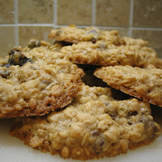 Honey Whole Wheat Oatmeal Cookies