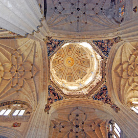 Salamanca Celing by Sara Rackow - Buildings & Architecture Architectural Detail ( religion, history, interior, salamanca, vaults, castille, ceiling, leon, cathedral, attraction, spain )