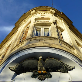 FARMACIA EL AGUILA - LA PLATA - ARGENTINA by Kile Zabala - Buildings & Architecture Architectural Detail ( argentina, arquitectura, patrimonio, edificio, la plata, buenos aires, edificios, detalle )