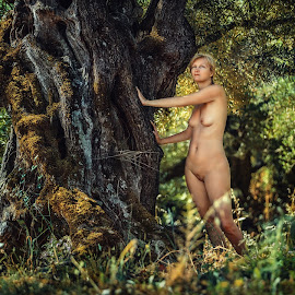 magic Forest by Dmitry Laudin - Nudes & Boudoir Artistic Nude ( nude, woman, summer, forest, olive )