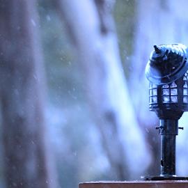 post lamp by Deepankar Patil - City,  Street & Park  Street Scenes ( posts, lamp, street scene, light, rain )