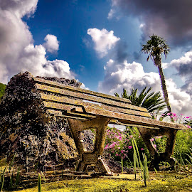 Old silent friend... by Manuel Alexandre - City,  Street & Park  City Parks ( history, old, sky, bench, park, clowds, collor, pov, garden, antique )