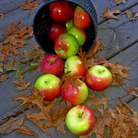 by Dipali S - Instagram & Mobile Android ( michigan, fruit, oak leaves, season, autumn, food, outdoor, fall, brown, apples, usa )