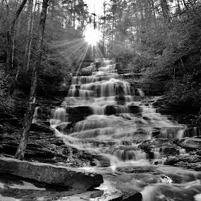 Minnehaha Falls by Lisa Montcalm - Black & White Landscapes ( , Earth, Light, Landscapes, Views )