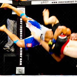 by Marcos Goes - Sports & Fitness Other Sports ( m1 eventos, afc, rede tv, 2012, mma, luta, combate )