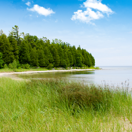Tall grass with coast line by Keith Homan - Landscapes Prairies, Meadows & Fields ( shore, nobody, wisconsin, rocky, door, ocean, seaside, travel, landscape, spain, adventure, sunny, trip, seacoast, place, pine, summertime, tall, water, picturesque, grass, green, beautiful, sea, forest, lake, seascape, scenic, relaxation, destination, luxury, michigan, vacation, blue, county, horizontal, trees, brown, view, stones, coast line, shore line )
