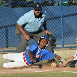 by Greg Douglas - Sports & Fitness Baseball ( your out, slide, all stars )