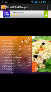 Urdu Salad Recipes - screenshot