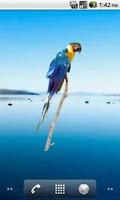 Screenshot of Parrot Blue Sticker