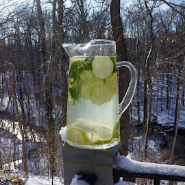 A refreshing winter drink!  by Karen Gorski - Food & Drink Alcohol & Drinks ( galena, winter, ohio )