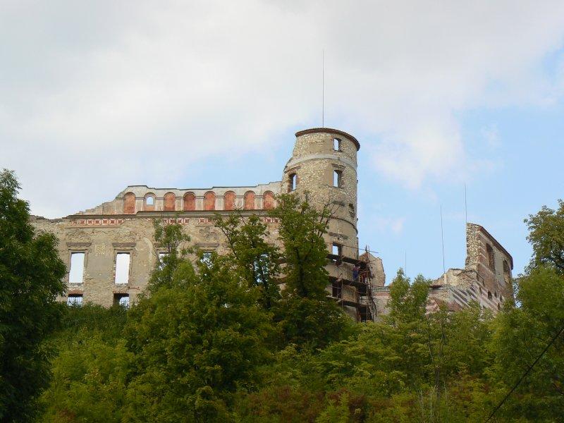 Fagment baszty i murów - zamek w Janowcu