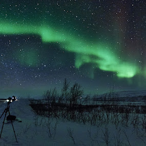 Northern Lights Hunter by Mino Taurus - Landscapes Starscapes ( sky, stars, northern lights, night, norway )