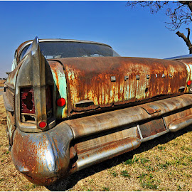 Rusted special by Johann Perie - Transportation Automobiles ( rusted, special )