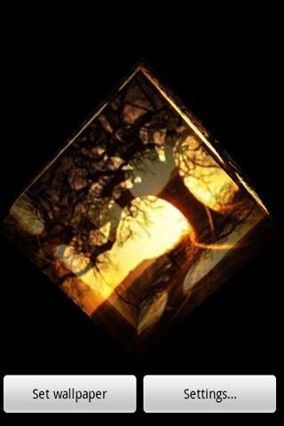 3D樹和晨報