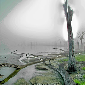Long hot summer scorches local pond by Raymond Earl Eckert - Landscapes Waterscapes