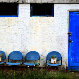 The Blue Door by Guy Harnett - Buildings & Architecture Decaying & Abandoned ( old, abandoned building, blue, west point, plants, stucco, blue door, fort montgomery ny )