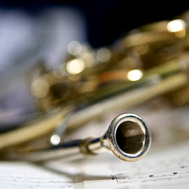 French Horn by Michelle Latouf - Novices Only Objects & Still Life ( french horn, musical, musical instruments, horn, french )