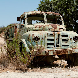 abandoned truck by Florence Guichard - Transportation Other ( old, truck, green, rust, cyprus, decay, abandoned )