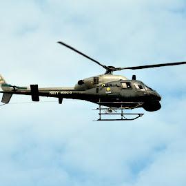 Helicopter by Kamalaprabhu Rathinasamy - Transportation Helicopters ( #malaysia #merdeka #helicopter #chopper )
