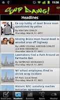 Screenshot of New York Local News