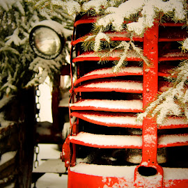 Old Tractor  by Kelly Roberts - Transportation Other ( old, winter, red, grill, tractor )