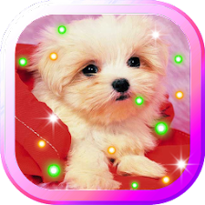 Puppy Songs live wallpaper
