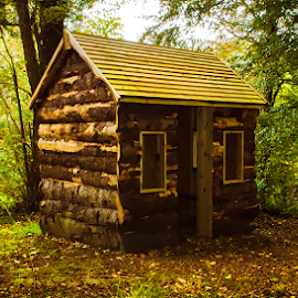 Cabin in the woods by Lisa Davies - Buildings & Architecture Other Exteriors ( orange, cabin, nature, autumn, green, forest, woods )
