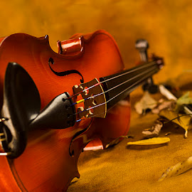 Violin #3 by Rakesh Syal - Artistic Objects Musical Instruments