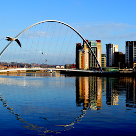 clear days by Paul Pirie - Buildings & Architecture Bridges & Suspended Structures ( water, clear, reflection, arch, bridge, river )