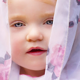 The Pink Rose Scarf by Cheryl Korotky - Babies & Children Child Portraits ( child model peyton, a heartbeat in time photography, portfolio, beautiful, amazing faces, blue eyes, veil, scarf, portrait )