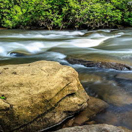 Stream by Naresh Balaguru - Landscapes Waterscapes ( streams )