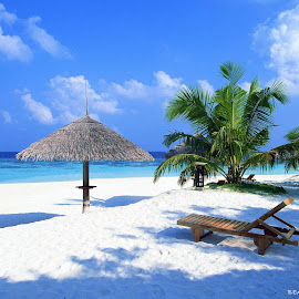 by Janet Skoyles - Landscapes Beaches ( Beach, sunset, blue, water, ocean. ,  )