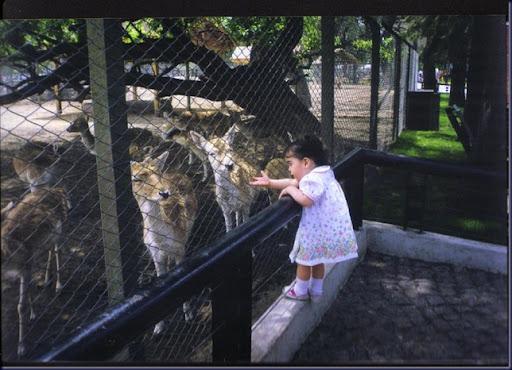 En el zoológico 07
