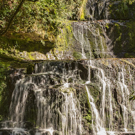 waterfall by Vibeke Friis - Landscapes Waterscapes ( waterfall, bush, rocks,  )