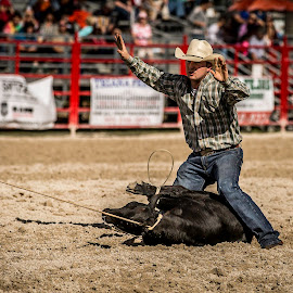 Done by Troy Wheatley - Sports & Fitness Rodeo/Bull Riding ( cowboy, rope, rodeo, calf roping, tied )