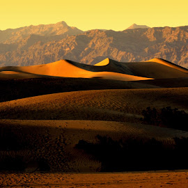 Sundown on the Death Valley by Brian Blood - Landscapes Deserts ( death valley, sand, desert, landscape,  )