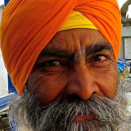 PORTRAIT OF A SIKH MAN #23 by Doug Hilson - People Portraits of Men ( face'india, sikh, turban, beard, man, portrait )