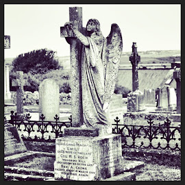 by Tracy Lawler - Buildings & Architecture Statues & Monuments ( ireland, old, soth, angel, graves, blacknwhite, stone )