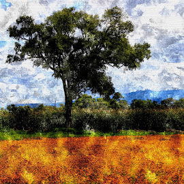 by Penélope Cordecan - Landscapes Prairies, Meadows & Fields