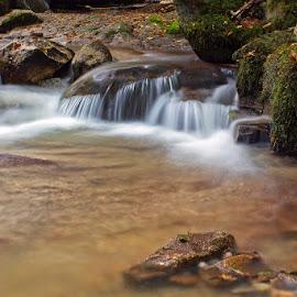 by Siniša Almaši - Nature Up Close Water ( water, up close, nature, stone, rock, river )