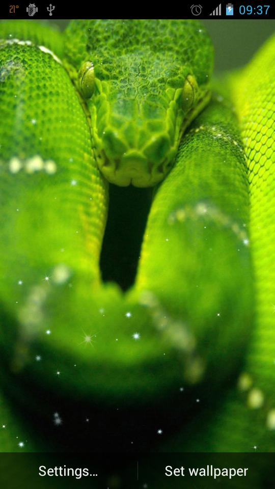 заставка на телефон змея № 57076 без смс