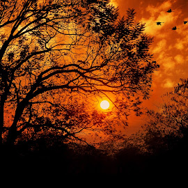 A Beautiful Sunset by Anurag Das - Landscapes Sunsets & Sunrises