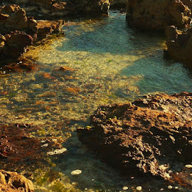 Sunset Shore by Leigh Martin - Nature Up Close Rock & Stone ( shore rocks pool sun )