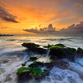 morning at manyar beach by Raung Binaia - Landscapes Sunsets & Sunrises ( bali, waterscape, moss, sunrise, beach )