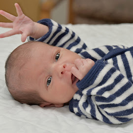 High 5! by Tara Chumsae - Babies & Children Babies ( babies, five, infant, cute, newborns, newborn, high five, sweet, adorable. innocent, hands, baby, baby fingers, infants )