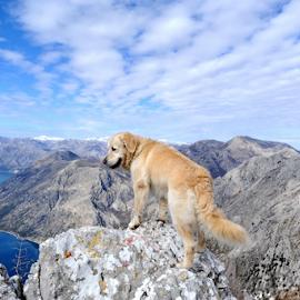 by Aleksandar Kordic - Landscapes Mountains & Hills