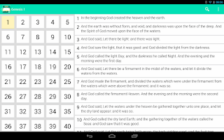 Screenshot of Holy Bible